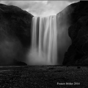 Fosters Bilder 2014
